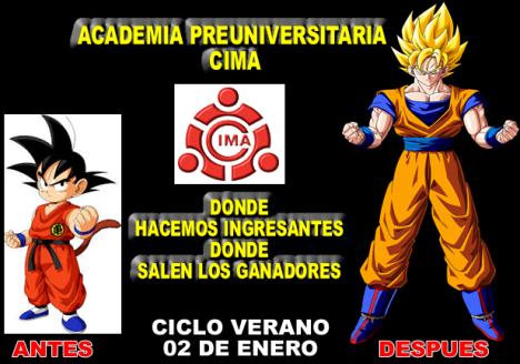 ACADEMIA PREUNIVERSITARIA CIMA INICIO CILO VERANO 2 DE ENERO